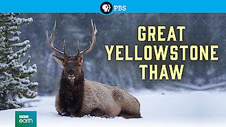 Is Great Yellowstone Thaw, Season 1 (2017) on Netflix Canada
