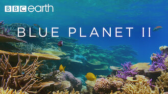Blue Planet II (2017) on Netflix in Canada